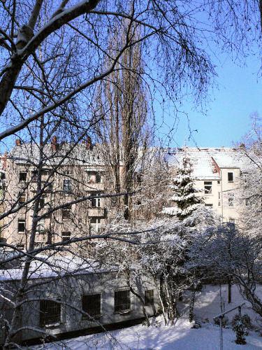 Hinterhof mit Schnee