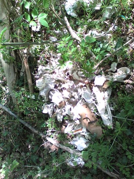 Knochenstapel am Buschausgang